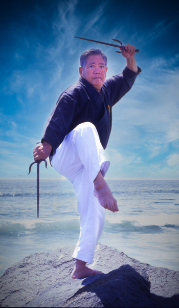Karate Videos Tsunami